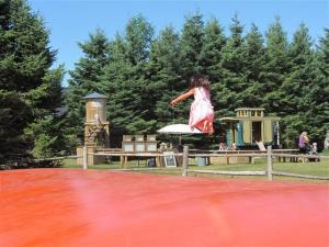 Jumping Pillows at Saunders Farm