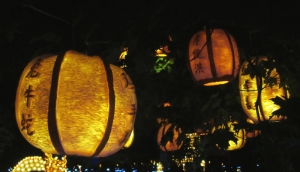 Chinese Lanterns at Pumpkinferno