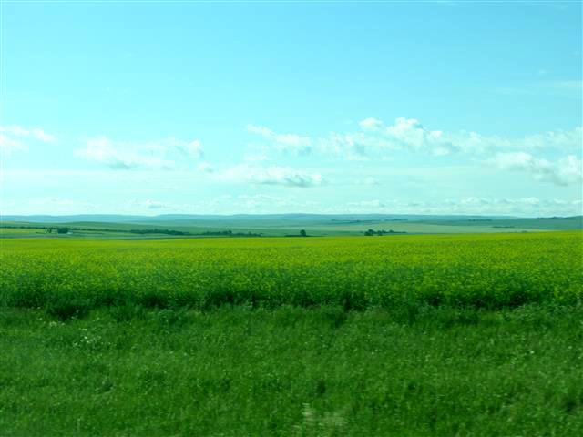 182_PrairieRoad